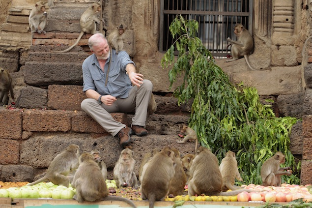 The monkey banquet in Lop Buri was first held in 1989 by local hotelier Yongyuth Kitwatananusont.