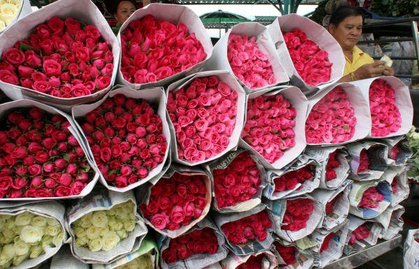 rose sellers