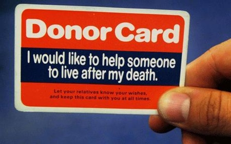 Kidney donors needed | Bangkok Post: learning