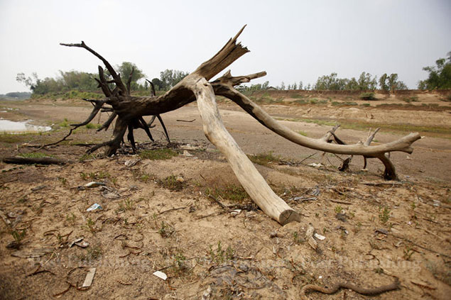 According to the Disaster and Mitigation Department, a total of 16,811 villages in 286 districts in 41 provinces have been affected by drought since Oct 2013.