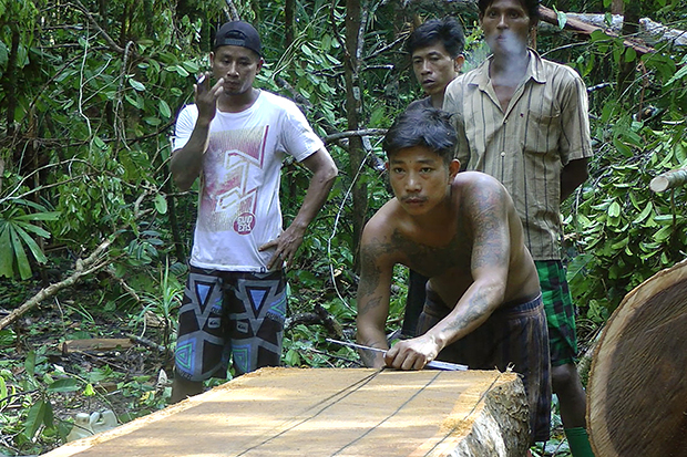 In this Nov 29 image from video, a former slave from Myanmar who goes by the name Mozet, centre, one of several slaves who escaped or ran away while Thai trawlers were docked at the Benjina port, cuts planks from a tree to earn money for food. The US government and major business leaders are renewing their call on the Thai government to crack down on slavery in its fishing fleets. (AP photo)