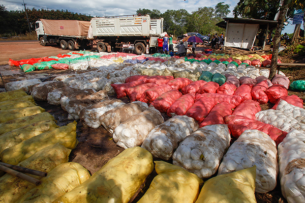 Rubber farmers in the Bung Kan province lay out latex at a market to sell. (Photo by Pattarapong Chatpattarasill)