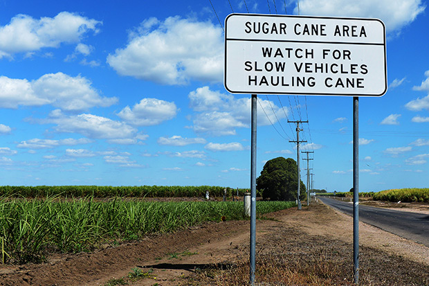 A sign warning drivers to watch for slow vehicles stands at a plantation near Ayr, Queensland, Australia, on Aug 9. Global sugar prices reached a six-year low in August as rising production levels and exports from countries like Brazil and India has put pressure on prices. (Bloomberg photo)