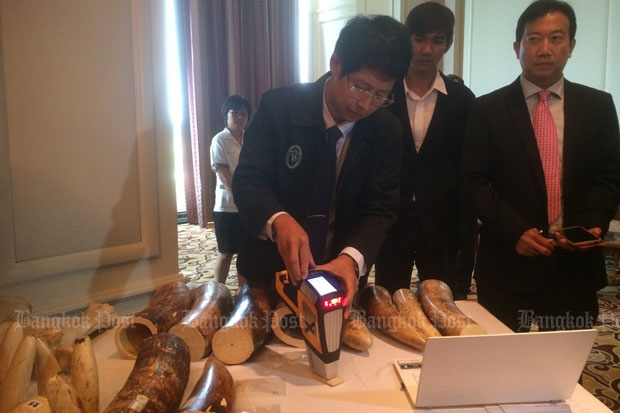 Researchers at Chiang Mai University demonstrate the world's first software app that can distinguish between Asian and African ivory, in Chiang Mai on Thursday. (Photo by Apinya Wipatayotin)