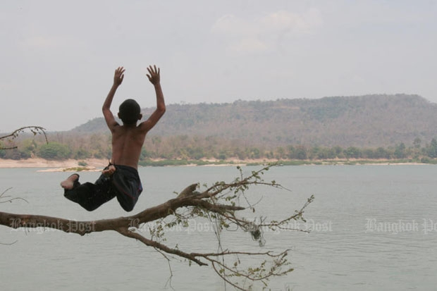 A boy jumps off a tree into the Mekong River in Ubon Ratchathani's Khon Chiam district. (Photo by Thiti Wannamontha)