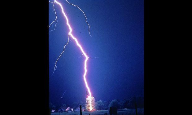 Famous photo of lightning bolt hitting a 65-foot tree in the US. The photo is a warning not to take refuge under branches of treet during a thunderstorm. Considered by experts one of the best pictures ever made of a lightning strike, the image  was taken in 1984 by Johnny Autery of Dixons Mills, Alabama, from his pickup truck (National Geographic July, 1993)