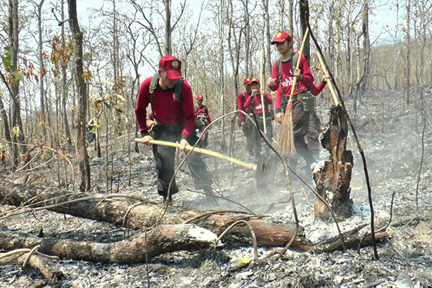 A fire crew on Monday ensures the flames are truly out in a section of Doi Suthep-Pui National Park ravaged by an overnight forest fire in Chiang Mai province.(Photo by Cheewin Sattha)