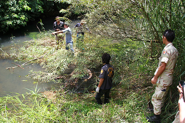 Police and rescue workers look for the body of a 13-year-old girl kidnapped by a 55-year-old man on Friday. The girl is later found dead in a canal in Trat's Muang district on Tuesday. (Photo by Jakkrit Waewkhraihong)