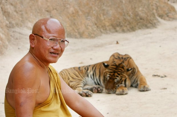 Phra Archan Phusit Khantitharo, or Luang Ta Chan, abbot of the so-called Tiger Temple in Kanchanaburi, fled as wildlife officials arrived with a court order to remove the big cats - and massive corruption has been revealed. (File photo by Yingyong Un-anongrak)