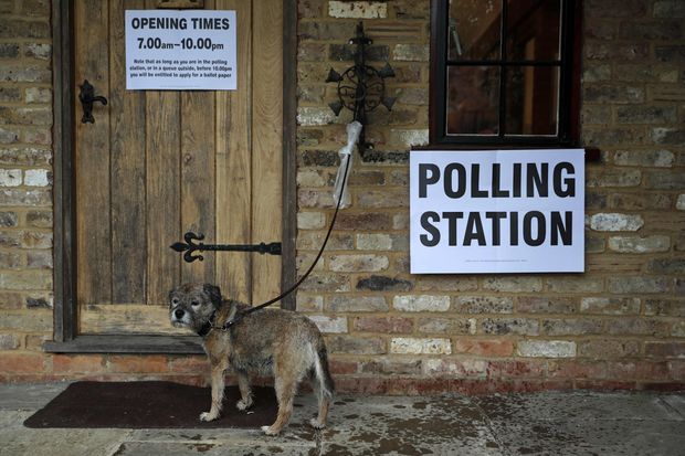 A dog waits as its owner casts their ballot paper in a polling station set up in the grounds of a private residence near Fleet, southwest of London, on Thursday, as Britain holds a referendum to vote on whether to remain in, or to leave the European Union. (AFP photo)