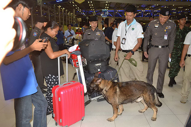A sniffer dog checks a passenger's suitcase at Suvarnabhumi airport on Saturday. (Photo by Sutthiwit Chayutworakan)