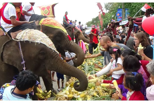 Tens of thousands of tourists join the Surin Elephant Fair in November 2014. (Photo by Nopparat Kingkaew)