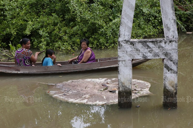 Local residents sadly observe a dead giant stingray floating in a canal linked to the Mae Klong River in Samut Songkhram's Muang district. A total of 45 stingrays were found dead in the area in early October. (Photo by Pattarapong Chatpattarasill)
