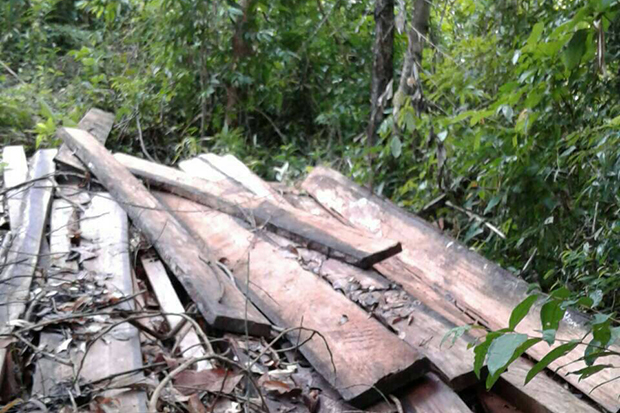 Wooden planks found on the mountain in Koh Phangan National Park. (Photo: Supapong Chaolan)