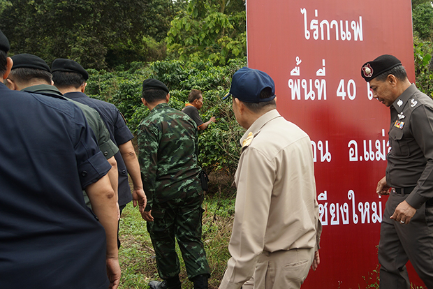 Authorities put up a confiscation sign at Lao Ta Saenlee's 40-rai coffee plantation in Chiang Rai on Friday. (Photo by Cheewin Sattha)