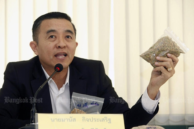 Thai Rice Millers Association president Manas Kitprasert shows paddy samples of different qualities at a briefing. (Photo by Pornprom Satrabhaya)