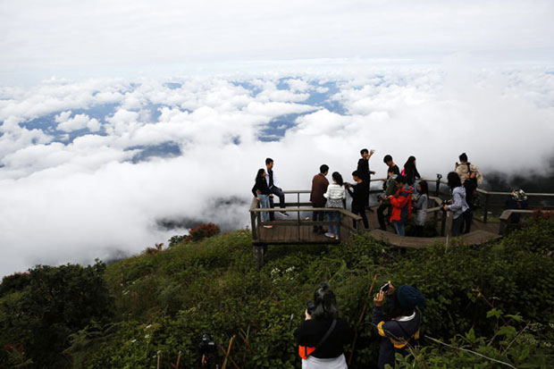Tourists visit Doi Inthanon, the country's highest peak, during the season's first cool spell in mid-November. (Photo by Karnjana Ayuwatanachai)