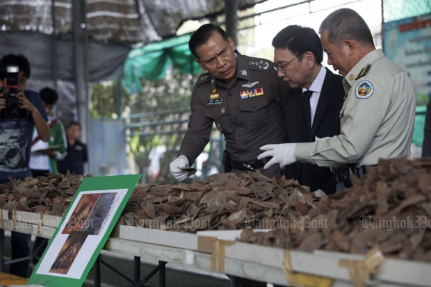 Customs Department chief Kulit Sombatsiri, in suit, deputy police chief Chalermkiat Srivorakhan, left, and Thanya Netithamkul, director-general of the National Parks, Wildlife and Plant Conservation Department, examine part of the 2.9 tonnes of pangolin scales seized while being shipped through Thailand to Laos in December. (Photo by Pawat Laopaisarntaksin)