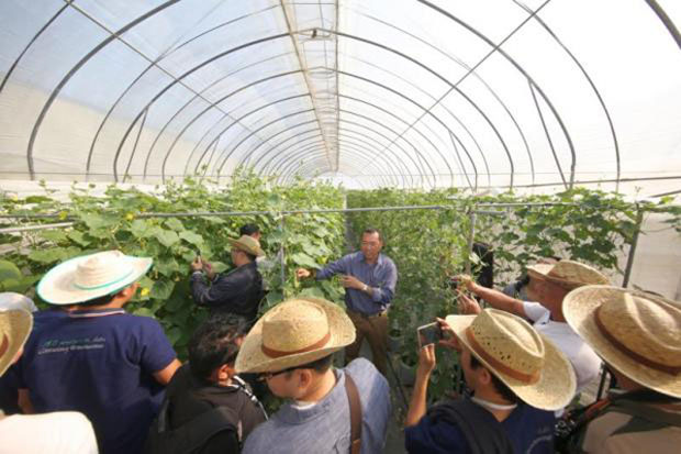 Main photo: A plant breeder introduces aroma cucumbers (pandan-scent) and mini angled loofah (luffa acutangula), considered to be new innovations, inside East-West Seed's Hortigenetics Research (Southeast Asia) Limited, Chiang Mai.  Photos courtesy of East-West Seed ROH Limited