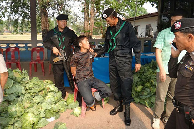 Sarayut Sae Yang, 24, a Hmong tribesman from Phop Phra district of Tak, is arrested after some 2 million speed pills are found under cabbages at the back of his pickup truck in Phayao's Pha Sang district on Wednesday. (Photo by Assawin Pinitwong)