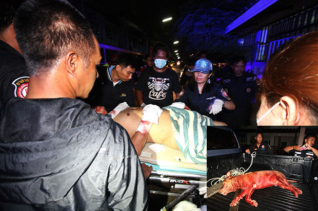 Rescue workers take a badly injured owner, 62, of a pit bull to a hospital. The man sustained multiple bite wounds on his body while his wife, 62, was also injured. Their pit bull dog was also hurt as the wife, armed with a knife, came to the rescue of her husband during the attack. (Photo by Pongpat Wongyala)