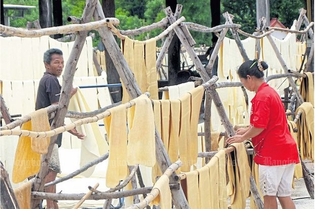 Farmers hang rubber sheets out to dry in Buri Ram. Farmers again face a worldwide slump in rubber prices and want urgent measures put in place to help survive the crunch. (Photo by Surachai Piragsa)