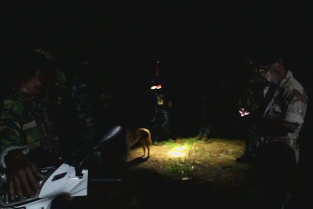 Park officials and soldiers safeguard Ban Thung Takhian in Khon Buri district in Nakhon Ratchasima on Saturday night after about five wild elephants were seen around the area. (Photo by Prasit Tangprasert)
