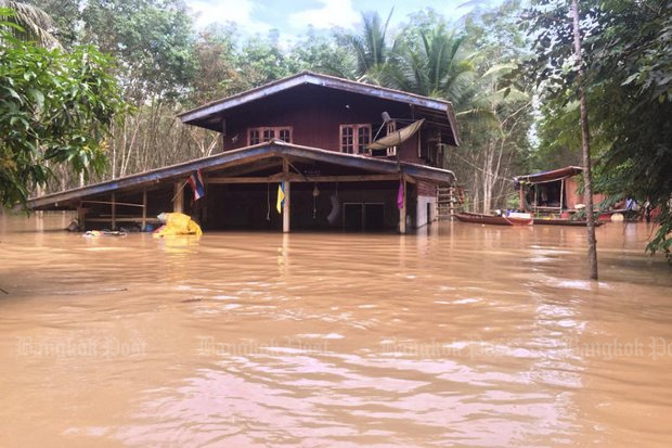 Houses in tambon Ipan of Surat Thani's Phrasaeng district went right under after the Tapi River bank collapsed and the river overflowed. The Royal Irrigation Department says it will get worse and has alerted villagers in low-lying areas. (Photo by Supapong Chaolan)