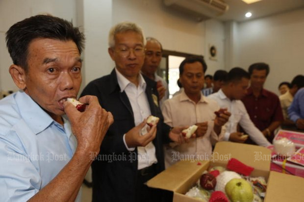 Orchard growers from Ratchaburi showed up Wednesday at the Department of Agriculture to eat their own fruit in an attempt to show it's safe despite use of controversial herbicides and pesticides. Conservationists are lobbying for a ban on two specific chemicals in agriculture. (Photos by Pattarapong Chatpattarasill)