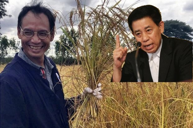 Ex-finance minister Korn Chatikavanij figures he has spent enough time in rice fields in the past four years not to take too seriously a lecture on rice by government spokesman Lt Gen Sansern Kaewkamnerd. (Main photo FB/KornChatikavanijDP)