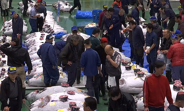 World's largest fish market re-opens in Tokyo