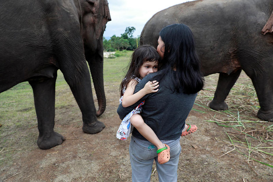 Emily Barton, 4, is seen before she and her father play piano for sick, abused, retired and rescued elephants in sanctuary along Thailand-Myanmar border in Kanchanaburi, Thailand, December 9, 2018. Paul has been playing piano for elephants as a volunteer for almost ten years. Picture taken December 9, 2018. — Reuters