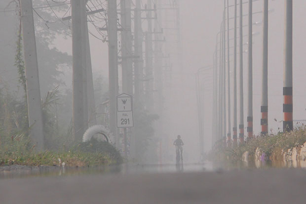 A cyclist make his way along a foggy road in Chai Nat on Thursday morning. (Photos by Chudet Seehawong)
