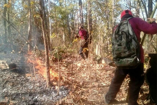 Forest firefighters put out a blaze in a forest reserve in Mae Sot district, Tak, on Thursday. (Photo by Assawin Pinitwong)