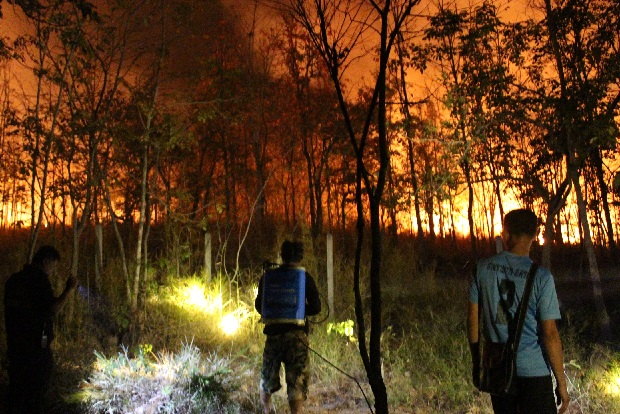 Firefighters face an advancing wall of flame in Khon Buri national forest reserve in Nakhon Ratchasima overnight. The fire defied their efforts and continued to burn on Tuesday morning. (Photo by Prasit Tangprasert)