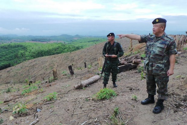 Third Region Army commander Lt Gen Vijak Siribansop inspects denuded hills in Nan where soldiers are tracking down suspects who cut down protected trees and are allegedly involved in drug trade. (Post Today photo)