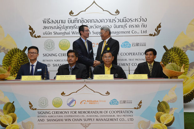Representatives of the Agriculture and Cooperative Ministry, Alibaba Group and farmers' cooperatives at the signing in Bangkok of an agreement for the purchase of at least 3,000 tonnes of durian for sale in China next year.  (Photo: Cooperative Promotion Department)