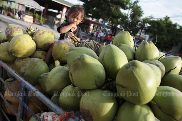 Three-month coconut import ban proposed