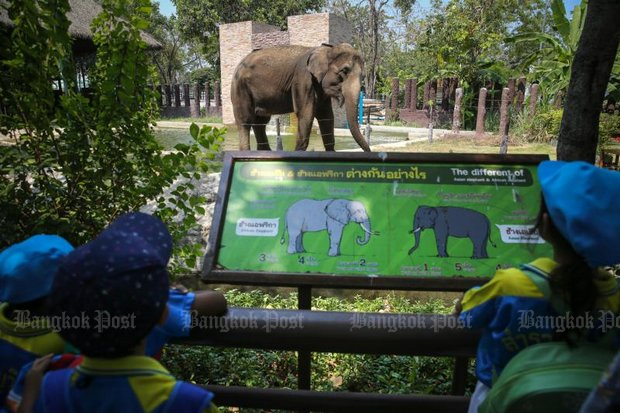 Elephant Day 2016 at the Dusit Zoo. Many Bangkok residents have nostalgia about the capitals only state-run zoo. (Post Today file photo)