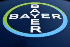 Bayer starts Monsanto integration as stock suffers