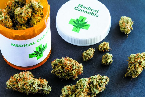 While cannabis remains a Class 5 narcotic, government has passed special legislation to legalise research into medicinal uses. (File photo)
