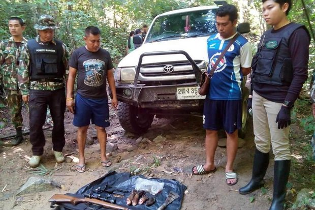 Binturong (bearcat) paws, a rifle, a handgun, ammunition and a knife are displayed after being seized from a convoy that entered Sai Yok National Park on Saturday. (Photos courtesy Sai Yok National Park)