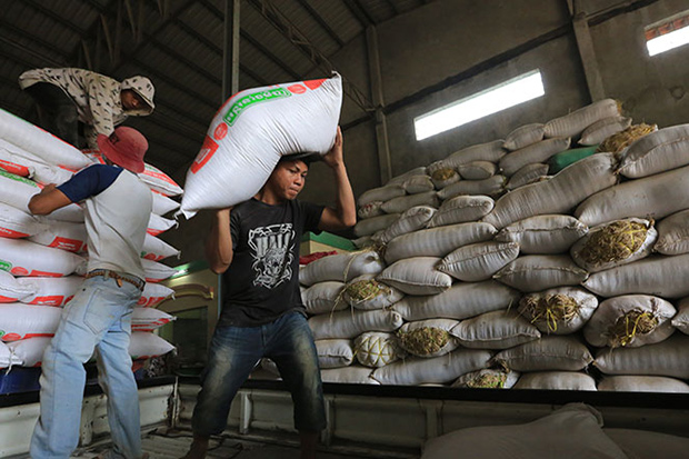 Cambodia's rice export this year falls, as the European Union stopped buying it and the tonnes quota to China was not fulfilled. (Khmer Times photo)