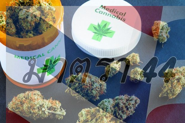 Thai nationalists have called on authorities to reject 11 foreign patents covering medical marijuana.