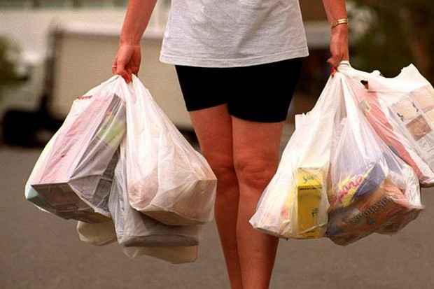 On the way home from the market. Tuesday is no-plastic bag day at major stores and convenience shops. (File photo)