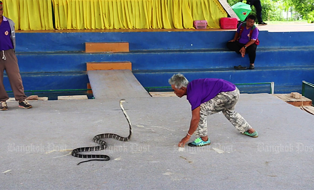 Snake village