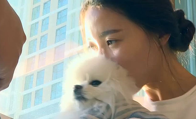 Young South Koreans are choosing pets over kids