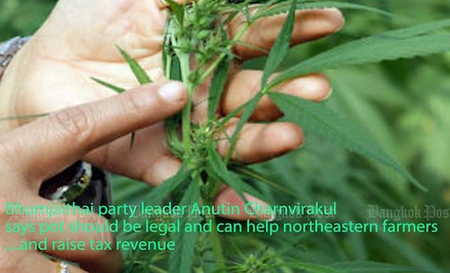 Legal pot - for money or medicine?