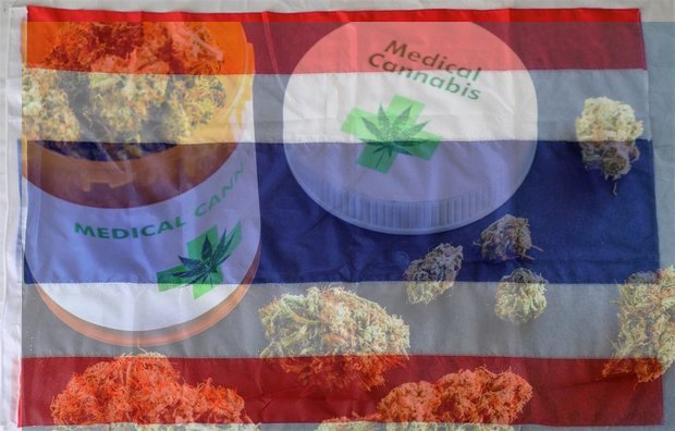 Several non-government groups are to meet Commerce Minister Sontirat Sontijirawong Friday over highly controversial foreign patents on extracting medical benefits from weed.
