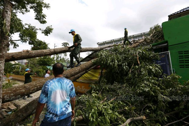 Soldiers and rescue workers remove trees that fell onto a building in the Thai Medicine Office in Nakhon Si Thammarat during Storm Pabuk on Jan 5. (File photo)